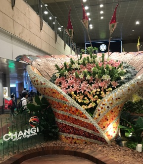 Orchid Display at Airport
